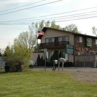 Whitmore Lake Tavern, Уитмор-Лейк
