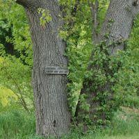 Lakeview Cemetery, Whitmore Lake, Уитмор-Лейк