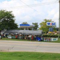 Produce stand, Whitmore Lake Road & 9 Mile Road Mile Road, Brighton, Michigan, Уитмор-Лейк