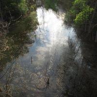 Unnamed pond on Whitmore Lake Rd, Уитмор-Лейк