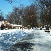 Houses on snowy street in Harper Woods Michigan USA, Харпер-Вудс