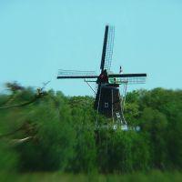 De Zwann, Holland, MI, Холланд