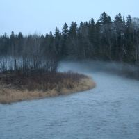 Aroostook River Stream, Бревер