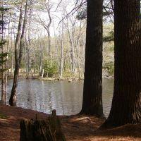 Pond, Кейп-Элизабет