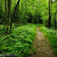 Green Belt Trail in Cape Elizabeth, Кейп-Элизабет