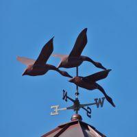 Geese weathervane, Кейп-Элизабет