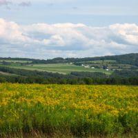 Farm Fields Aroostook County Maine, Левистон