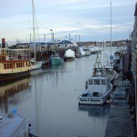 Portland Docks Froze Over, Портленд