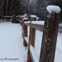 Snowy Fence, Фрипорт