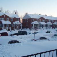 Snow 2010 !!!, Арбутус