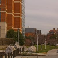 NIH, Бетесда