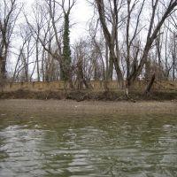 The Anacostia river trail boardwalk, Брентвуд