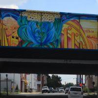 Road Artwork, Бруклин-Парк