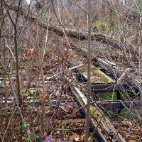 Glen Echo Trolley Trestle, between Clara Barton Pkwy & MacArthur Blvd, Bethesda MD, Брукмонт