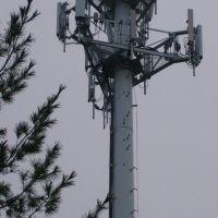 Verizon Wireless plus, Брукмонт