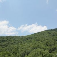Allegheny Mountains, Maryland (USA) - June 2010, Камберленд