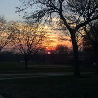Winter Sunset, Parkville Maryland, Карни