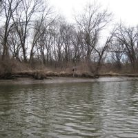 bird habitat housing on the banks of the anacostia, Норт-Брентвуд