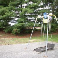 Wheelchair swing, Парквилл