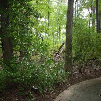 Herbert J. Wolfe Memorial Garden, Парквилл