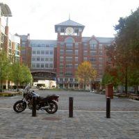 rockville town center, Роквилл