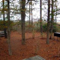 Daugherty Creek primitive campsites, Сомерсет