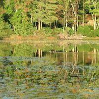 Fall on Allen Pond, Фрутленд