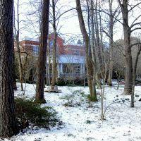 Commons_Snow, Фрутленд