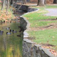 Pangborn Park, creek, Хагерстаун