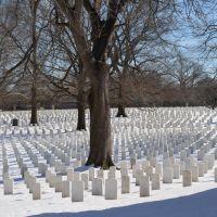 Veterans cemetery, Чиллум