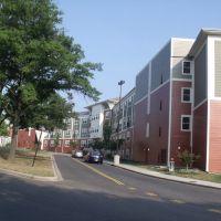 Apartments and Condos, Чиллум