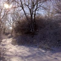 Snowy trail, Дентон