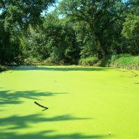 Big Blue River, Milford, NE, Милфорд