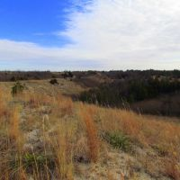 Viewing easterly, from atop a rim next to a muzzleloading range, off Nebraska State Spur Hwy. 86B, in the Bessey Unit of the Nebraska National Forest. Halsey, Nebraska, Оффутт база ВВС