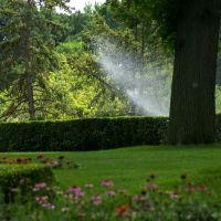 MT Vernon Gardens, Папиллион
