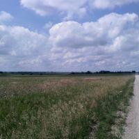 Nowhere Land, Папиллион