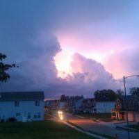 A little Storm, Папиллион