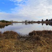 Viewing easterly across Fish Pond, off the side of Nebraska State Spur Hwy. 86B near the eastern entrance to the Bessey Unit of the Nebraska National Forest. Halsey, Nebraska, Скоттсблуфф