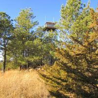 Viewing west-north-westerly toward the Scott Fire Lookout off the side of the terminus of Nebraska State Spur Hwy. 86B. In the Bessey Unit of the Nebraska National Forest, Halsey, Nebraska, Спрагуэ