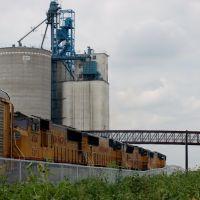Westbound Union Pacific Railroad Train led by Locomotives No. 4426, No. 5007, No. 4076 and No. 4514 at Overton, NE, Хастингс