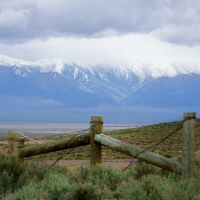 Nevadas vast great basin area, Калинт