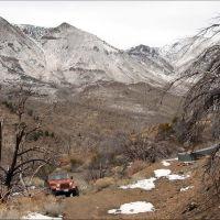 Twin Peaks - 200704LJW, Ловелок