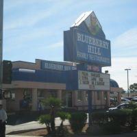 Blueberry Hill Restaurant, Парадайс
