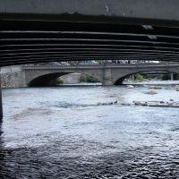 여기에도 오리가 Trucke River Reno NV, Рино