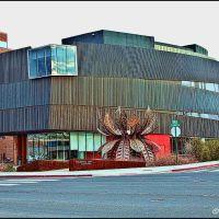 Museum of Art - Reno Nevada, Рино