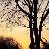 Sunset @ Bergenfield, NJ, Бергенфилд