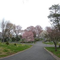Glendale Cemetery, Блумфилд