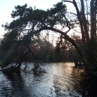 Metedeconk River, Брик