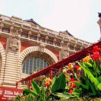 NY flowers 3: Ellis Island, Джерси-Сити