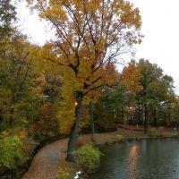 West Hudson Park, Ист-Ньюарк